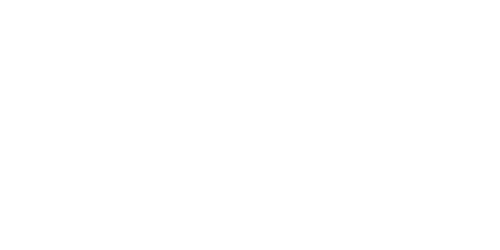 Wau Academy